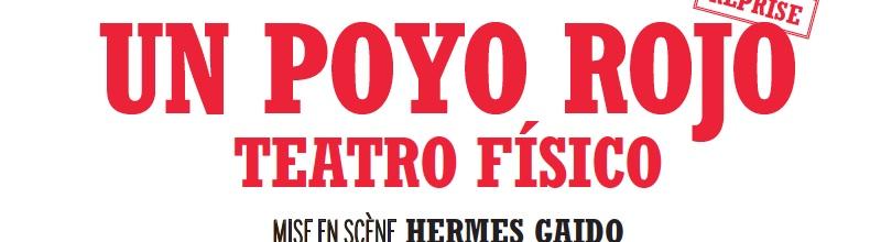 Un Poyo Rojo : combat de coqs burlesques et séducteurs